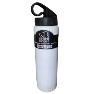 Silver Buffalo Double Walled Stainless Steel Water Bottle/Tumbler, 20 Oz